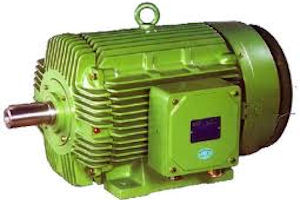 Energy Efficient Electric Motor Selection